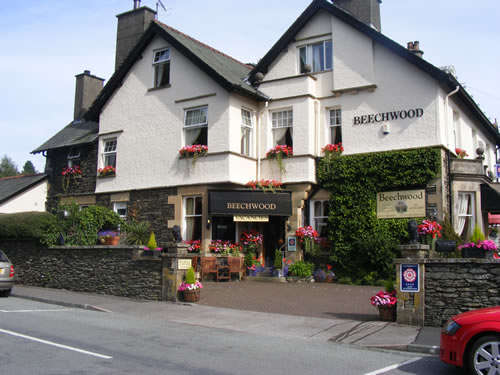 Beechwood in Bloom